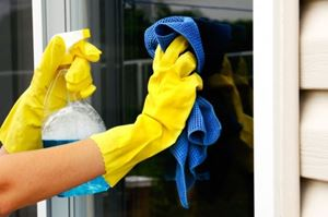 Picture for category Glass Cleaner & Polish
