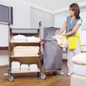 Picture for category House Keeping Trolleys