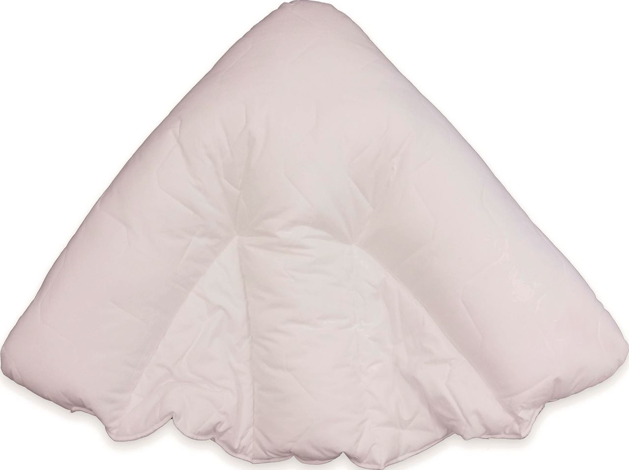 Picture for category Batwing Pillow