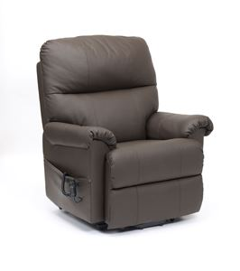 Picture for category Borg Riser Recliner