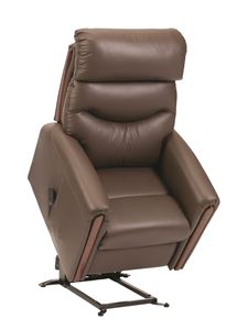 Picture for category Santana Riser Recliner