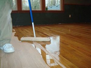 Picture for category Floor Cleaner & Carpet Care