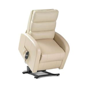 Picture for category Dual Motor Recliner